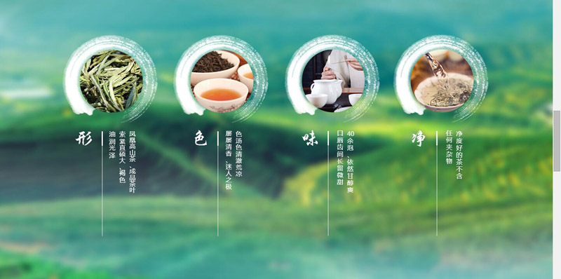 茶叶网站效果图4